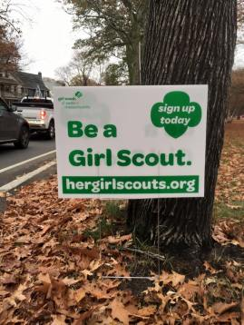 be a girl scout